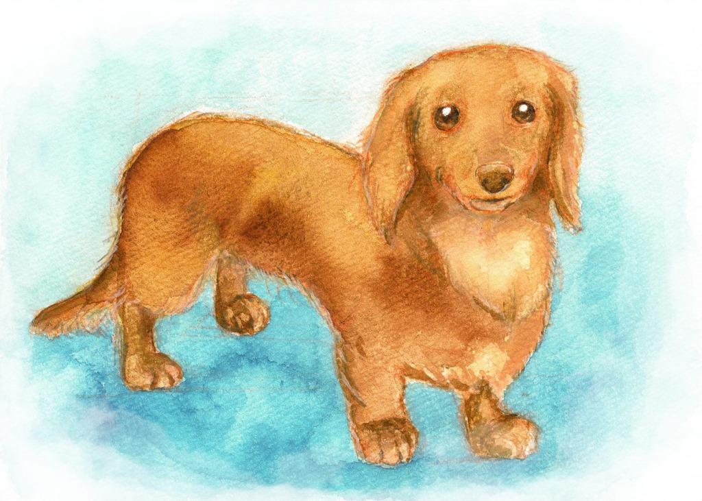犬の似顔絵(しま かすみ)